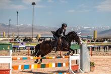 نتایج مسابقات پرش با اسب قزوین اعلام شد