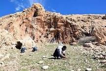 ثبت ۷۰ غار و پناهگاه صخرهای از دوران پارینهسنگی در بررسیهای باستانشناسی ایذه
