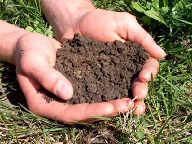ناهماهنگی بین بخشی چالش جدی حفاظت خاک است