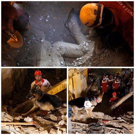 کشف جسد دیگری در ساختمان فرو ریخته ظفر + عکس
