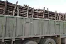 9.5 تن چوب قاچاق در بوکان کشف شد