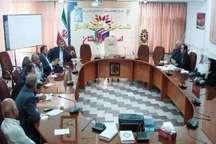 دومین جشنواره خیرین کتابخانه ساز کردستان تابستان امسال برگزار می شود