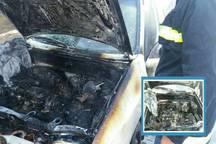 ترکیدن باتری خودرو را درگناوه به آتش کشید