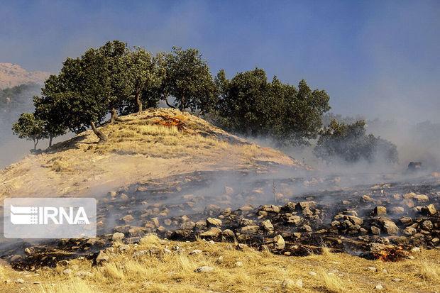رشد ۹ برابری آتش سوزی در منابع طبیعی قزوین