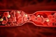 اهدای خونِ زنان با سابقه بارداری بیخطر است