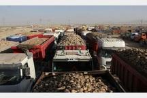 61هزارتن چغندر برداشت شده در مهاباد تحویل کارخانه های قند شد