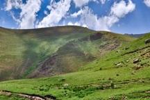 پوشش گیاهی مراتع ییلاقی استان اردبیل کاهش یافت