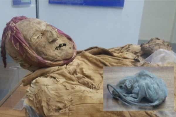 ماجرای نگهبان کلیسایی که جسد مومیاییاش یافت شد + تصاویر