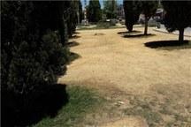 عملیات ترمیم فضای سبز یاسوج در دست اجراست