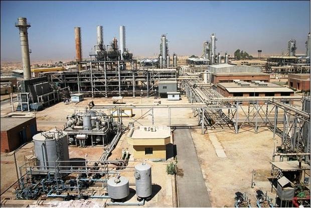 همکاری تنگاتنگ پالایشگاه گاز ایلام با شرکت های دانش بنیان داخلی