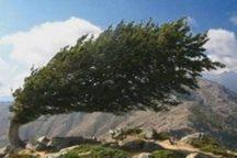 تندباد با سرعت 70 کیلومتر بر ساعت استان مرکزی را در نوردید