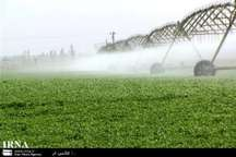 6 هزار هکتار از زمین های کشاورزی قم با سیستم های نوین آبیاری می شود