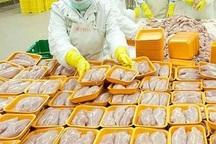 صادرات روزانه 30 تن مرغ از آذربایجان غربی به کشورهای همسایه