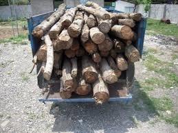 کشف2 تن چوب آلات جنگلی قاچاق در ساری