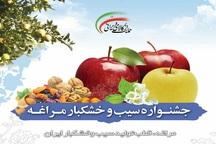 سالانه 50 هزار تن سیب در مراغه دورریز می شود