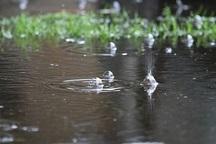 پیش بینی بارش های 2 هفته آینده کهگیلویه و بویراحمد
