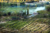 گلیان به عنوان روستای هدف گردشگری در شیروان انتخاب شد