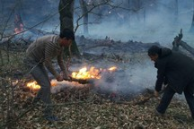 دستان خالی جنگلبانان برای مقابله با آتش