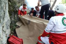 فرد سقوط کرده از کوه در جهرم نجات یافت