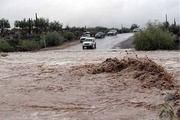 سیلاب مسیر بردسکن به طبس را بست
