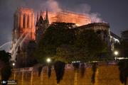 واکنش رئیس میراث فرهنگی به آتش سوزی کلیسای نوتردام