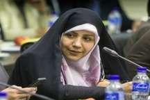 نماینده مجلس: شوراها هویت مردم سالاری دینی است
