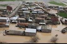 استقرار گروه های واکنش سریع دامپزشکی در مناطق سیل زده گلستان