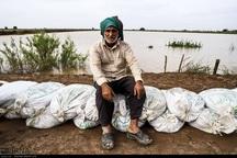 خسارت سیل به کشاورزی خوزستان هفت هزار و 400 میلیارد ریال است