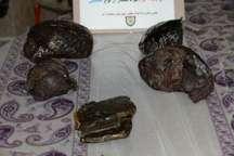 فرمانده انتظامی: بیش از پنج کیلوگرم مواد مخدر در میاندوآب کشف و ضبط شد