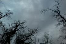 بارش پراکنده باران کرمانشاه را در برمی گیرد