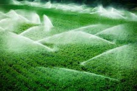 بهره وری آب در بخش کشاورزی تنها راه نجات بحران آب کشور است