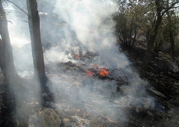 مهار آتشسوزی در مراتع دالاهو  صعب العبور بودن مانع اصلی مهار آتش