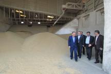 فرماندار: مسئولان برای ارتقاء کیفیت نان در آستارا تلاش کنند