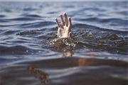 جوان طارمی در رودخانه غرق شد