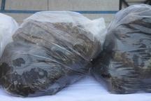 کشف بیش از 42کیلوگرم تریاک در شهرستان بویراحمد
