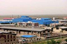 گام های عملی برای خارج کردن واحدهای تولیدی استان ایلام از رکود