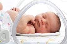 48 درصد زایمان ها در بیمارستان های قم طبیعی است