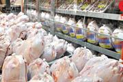بیش از ۲۲ میلیون کیلوگرم گوشت گرم مرغ در مراکز عرضه زنجان توزیع شد