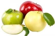 صادرات 3 میلیون دلاری سیب درختی از استان زنجان