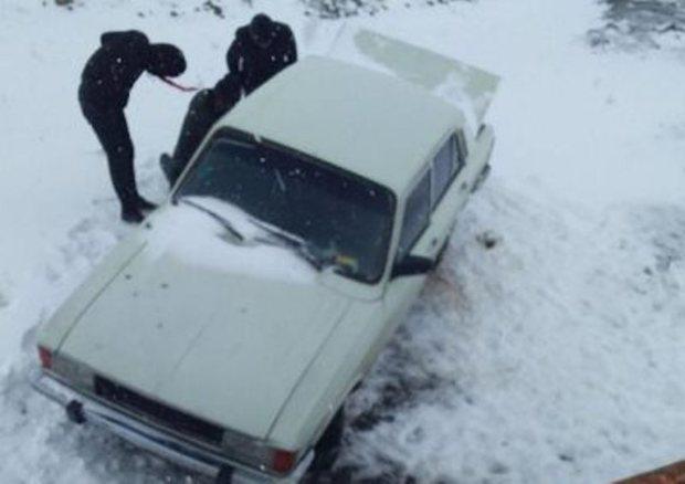 سرنشینان 20 خودروی در جاده برفی بلده -هراز نجات یافتند