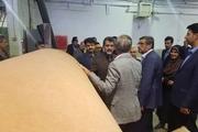 معاون هماهنگی امور اقتصادی وزیر کشور از صنایع همدان بازدید کرد