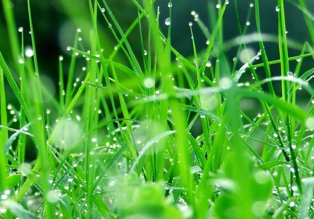 بارش های سالجاری در عجب شیر 57 درصد افزایش یافت