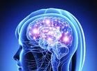 گرما و سرما چگونه مغز را فریب می دهند؟
