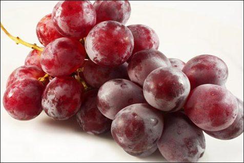 انگور قرمز در پیشگیری از سرطان روده کاراست