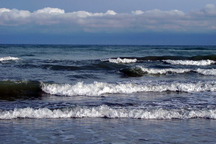 فردا دریای عمان مواج می شود