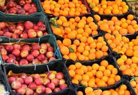 ثبات قیمت میوه در سمنان با ساماندهی دستفروشان میسر میشود