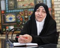 جلودارزاده: ریاست مرکز پژوهش ها به عارف پیشنهاد شده است