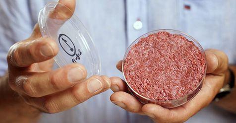 تولید گوشت در آزمایشگاه امکان پذیر شد!
