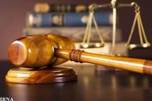 همسر مدیرعامل سکه ثامن بازداشت شد