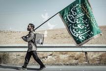 عکاسان روایتگر زائران پیاده حضرت امام رضا (ع) در مشهد شدند